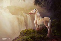 Horses - Digital Art