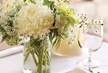 Centerpieces / by Jill Myers