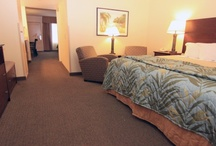 Edgewater Hotel in Duluth / Family Friendly Hotel in Duluth, MN. Amenities include free shuttle service, free bike rental in the summer, mini golf, outdoor pool and of course indoor water park!