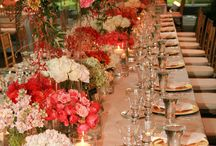 Weddings / Pictures of Weddings/ Indy Event