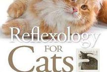 doggie reflexology natural healing & aromatherapy