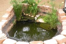 Water Features - Turtle Habitats - Swimming Pool for My Boy's