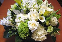 Jessica & Eliot's Wedding / Green & White, organic, fresh, natural, not so much Cape Cod themed / by Jamie Bohlin