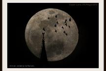 LUNAS / Hermosas lunas vistas desde cualquier punto de México.