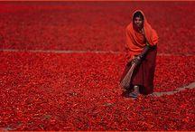Explore: India