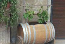 Plantering / Bolzano planteringstips