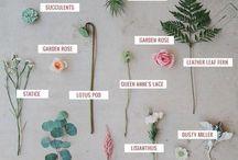 Floral Design Guides