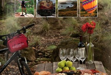 Sonoma County / This board is about the lifestyle here in Sonoma County...things to do, places to visit, restaurants, shops, sights to see, and more! Visit us at http://russianriverlandandhome.com/ #russianriverliving #russianriverrealestate #socialmediamarketing