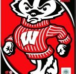 Wisconsin Badgers Collectibles & Memorabilia / Wisconsin Badgers Sports Memorabilia & NCAA Collectibles. From the Kohl Center to Camp Randall...Bucky Badger Approved! / by Legends of the Field Sports Memorabilia