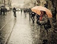 rain / by Freshly Picked by Christina