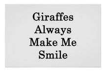 •Giraffes•