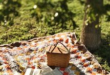 picnic_outdoor