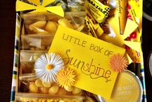 Sunshine Box / by Lauren Langevin