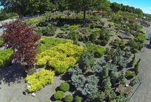 Vues aériennes du Jardin2m