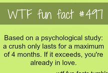 WTF Fun Facts / My favourite WTF a Fun Facts.