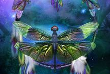 dragon fly@butterfly