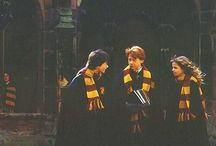 Harry Potter  / Harry Potter is my life and i am very happy that my childhood grow with this story