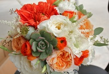 Orange & Peach bouquets / by Stems Flower Shop Dore Huss