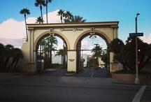 I Love LA My Hometown / by Maryann Cirincione