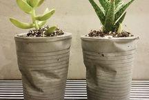 potter og planter