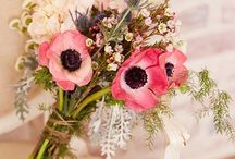 flower / 花 / 花の画像です。