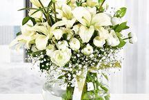Masumiyet escicek.com'da! / Masumiyetin simgesi olan beyaz; escicek.com'un çiçek tasarımlarıyla birleşerek sevdiklerinizi sevindirmenize yardımcı olacak :) Çiçek arajmanlarımıza çok yakında www.escicek.com adresinde ulaşabilirsiniz.