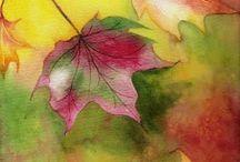 hojas...