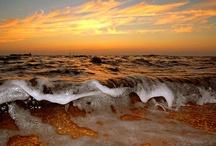 Marine - Ocean Waves / by Neadeen Masters