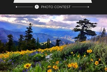 GOtmber / Photo gallery from Tmber's National Get Outdoors Day Photo Contest / by tmber