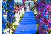 Purple & Turquoise Theme