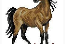 cusături cai