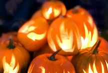 Pumpkins & More! / Halloween and Fall goodies!