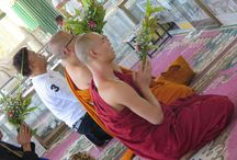 Our Photo Album Buddhas and Monks I OPEN YOUR WINGS / Photos which we have taken by ourselves.