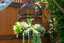 Jardim / Para florir a vida.