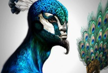 Animal Body Paint