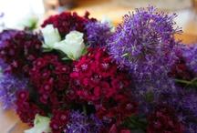 Kwiatowe inspiracje  / Flower Decorations and Ideas / Prezentujemy tutaj prace, zdjęcia, jak również pomysly czy inspiracje, które nas urzekły, zaskoczyły bądź wpasowały się w nasz styl i gust. Zapraszamy również na stronę internetową www.studioatamaris.pl. Jeśli ktoś z Was zapragnąłby takich dekoracji dla siebie, na wesele, event czy do biura - serdecznie zapraszamy do kontaktu: pracownia@studioatamaris.pl