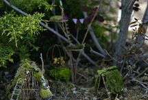 Fairy Gardens / by Thea Smith