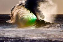 surfing / surf