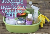 Cleaning/Shortcuts/Organize / by Donalyn / The Creekside Cook