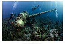 Shipwrecks Underwater Photography / Shipwrecks & plane wrecks under the sea are often habitat for marine life... and objects of exploration for scuba divers   Underwater photographer Liz Harlin, based in Noosa on Queensland's Sunshine Coast (Australia)
