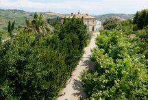 IL RELAIS CASA DEL GALLO - www.casadelgallo.it / La famiglia Persiani ha ricavato tre gradevoli appartamenti dove gli amanti della natura e della tranquillità possono soggiornare e visitare le bellezze artistiche, storiche e ambientali della zona.