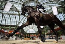Equestrian style  / by Megan Coogan