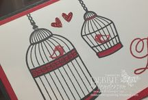 Builder birdcage
