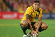 Super 15 Rugby 2014 / Our blood is Green and Gold!