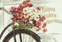 BACKGROUND - BICYCLES