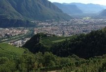 Impressions from our vineyards / Most of our #vineyards are situated on the hills around #Bolzano and offer a splendid view to the town of #Bolzano and the #Dolomites.