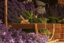 Provence style