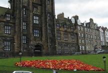 Flowers from Edinburgh
