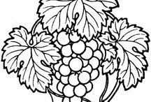 Plants, Fruits, Vegetables Ideas