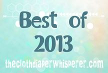 Best of 2013 in Cloth Diapering / What were our most popular blog posts and products of 2013?   / by Diaper Shops